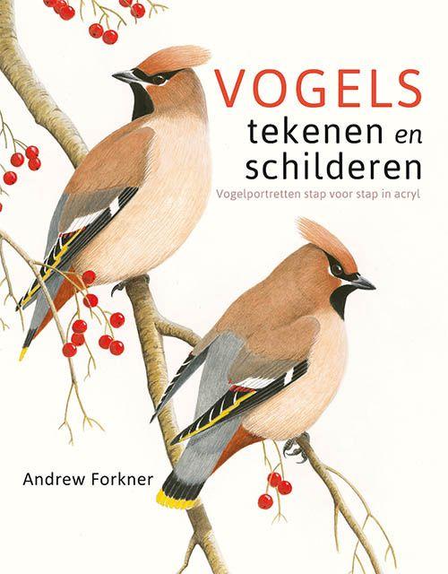 Boek - Vogels tekenen en schilderen - cover