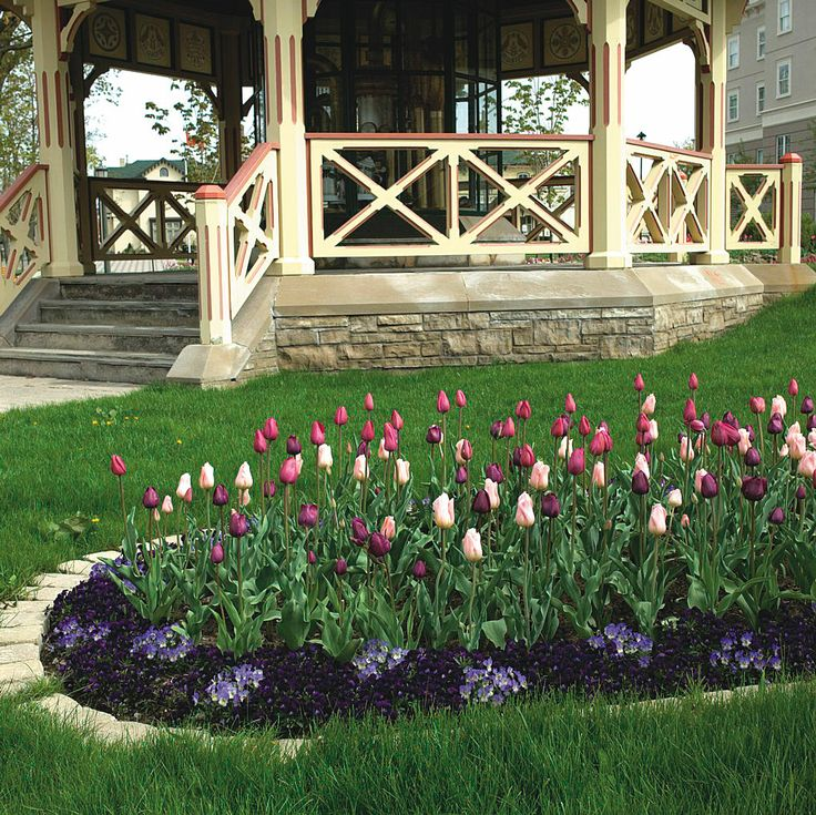 Spring Flowers And Yard Landscaping Ideas 20 Tulip Bed: 29 Best Images About Front Flower Bed Ideas On Pinterest