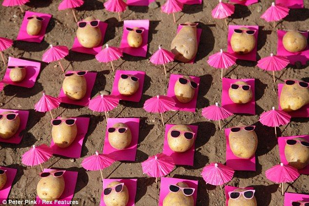 Hot potato: Artist Peter Pink uses vegetables to create surreal art installations, like this hilarious beach scene