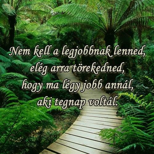 Nem kell a legjobbnak lenned, elég arra törekedned, hogy ma légy jobb annál, aki tegnap voltál. # www.facebook.com/angyalimenedek