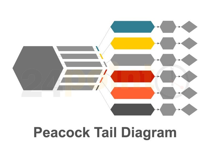 Peacock Tail Diagram  http://www.24point0.com/ppt-shop/peacock-tail-ppt-diagram#