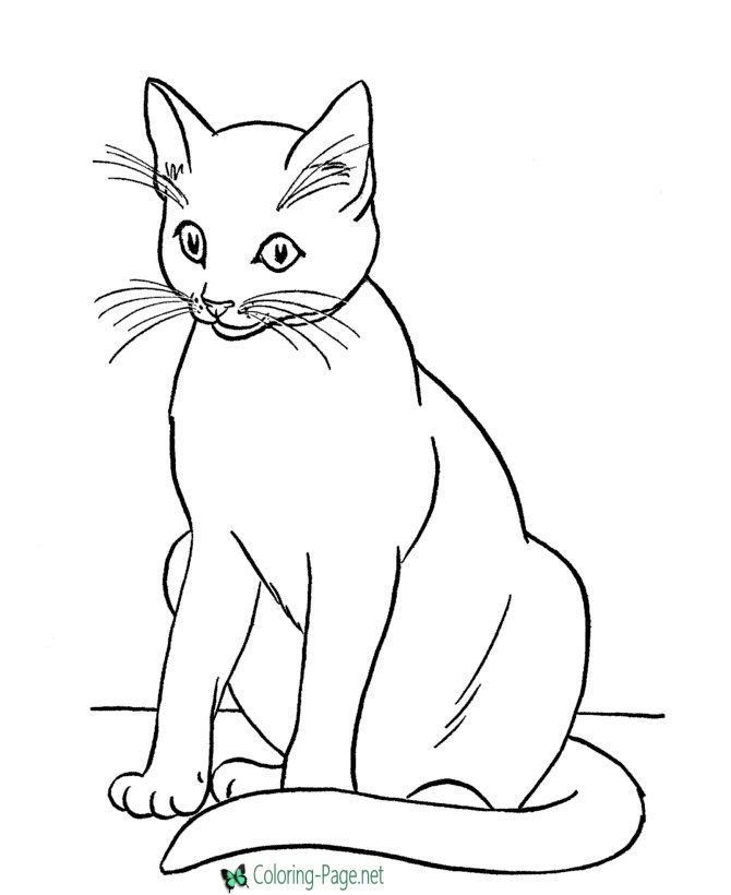 Printable Cat Coloring Pages Cat Coloring Page Animal Coloring