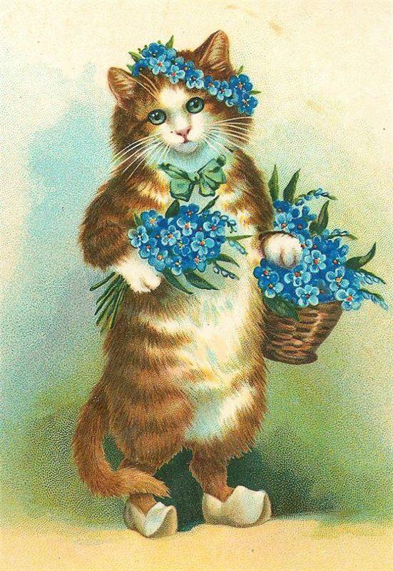 Изображение кота на открытке