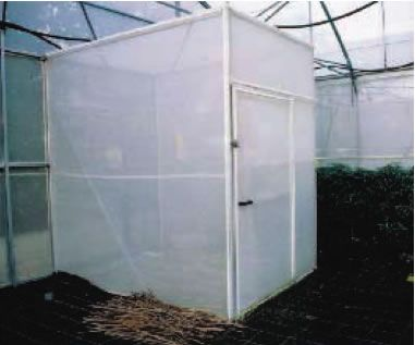 containment room for entry into individual cages