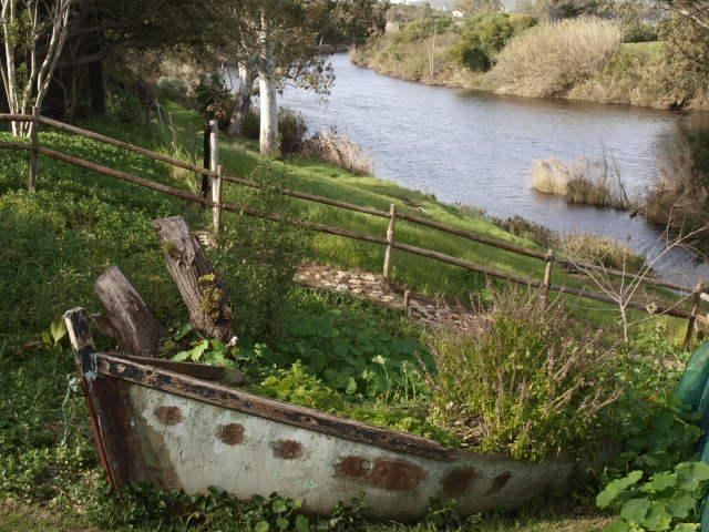 Blue Gum Cottages | Bonnievale self catering weekend getaway accommodation, Western Cape | Budget-Getaways South Africa