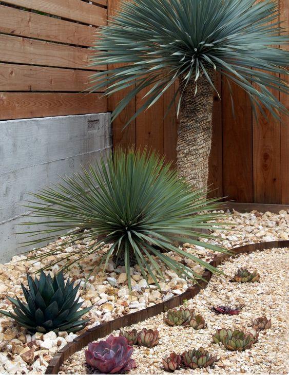Aiuole rocciose flora decorazioni giardino aiuole e for Decorazioni giardino aiuole