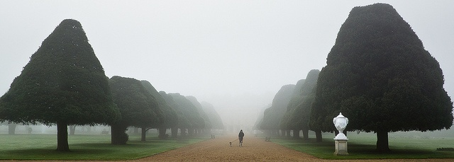 Foggy Hampton Court