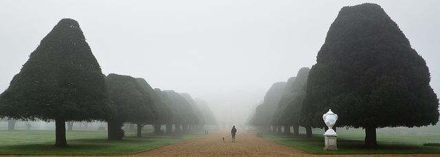 Foggy Hampton Court