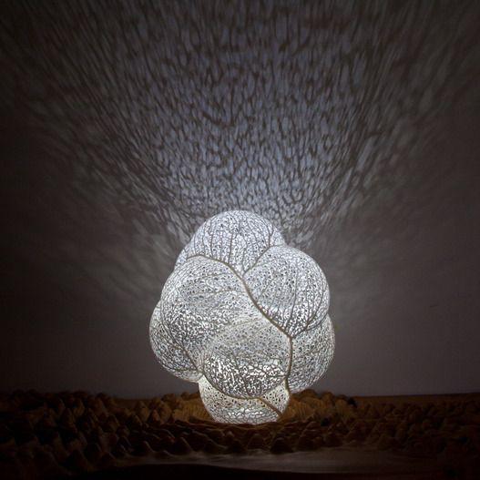 Nervous System | Hyphae | Orbicular Lamp