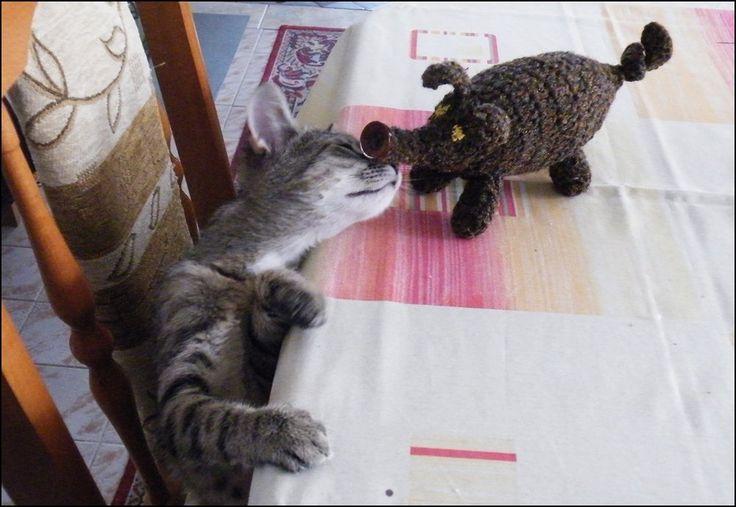 Micónak malaca van! | Szánter kézimunka blogja.