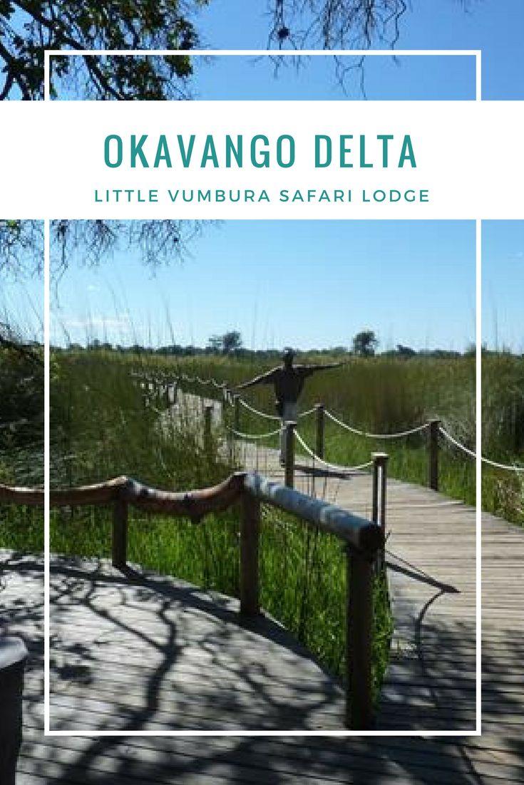 Das Little Vumbura Camp inmitten des Okavango Deltas gehört zu den Land- und Wassercamps. Dadurch eröffnet sich uns eine beeindruckende Artenvielfalt bei jeder Safari-Tour.