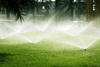 Watering the Lawn:   Every single expert on turfgrass management will give a different answer when asked for the best management practices for water – as well they should. Truth is that every lawn has situations that are unique to that lawn. Soils are infinitely different, trees shade lawns in different ways during the day. All of these factors and more go into determining the proper watering schedule.