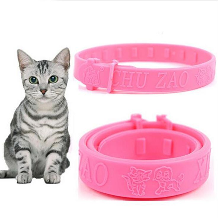 2016 New Cats Soft Silicone Pet Cats Flea Collar Reject Tick Mite Louse Kitten Collar