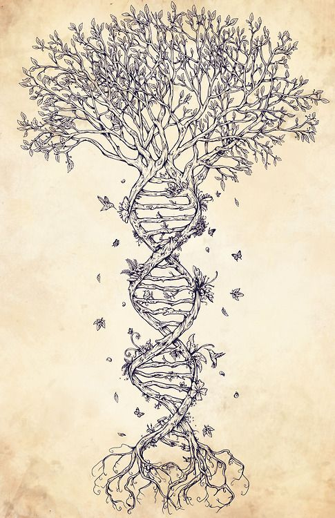 This would make a cool tattoo :)
