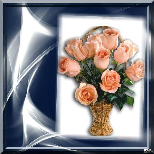 Rózsa vázában