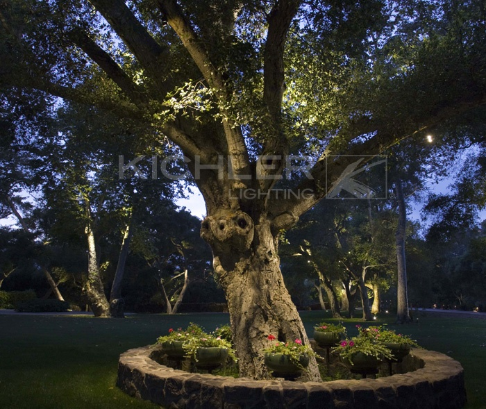 A grand old tree becomes an ambassador to the stars with  Kichler landscape LED accent lighting. The highlights on the tree and surrounding plants create an eye-catching detail that is not to be missed.