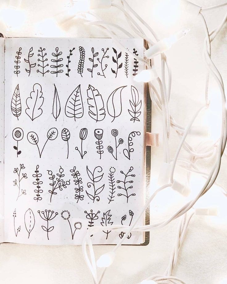 "886 Gostos, 6 Comentários - Bullet Journal and Planners (@discoverbulletjournal_planners) no Instagram: ""Some adorable leaf vector doodles to grace your feed with. reposted with permission from…"""