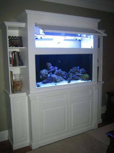 "Best Images Fish aquarium decorations ideas on ""#aquarium #fish tank"" 