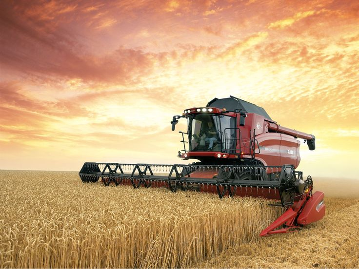 paintings+of+combines | Pictures 1 › CASE IH COMBINE