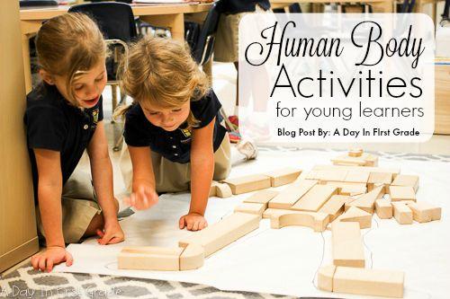 Studying the human body with kindergarteners