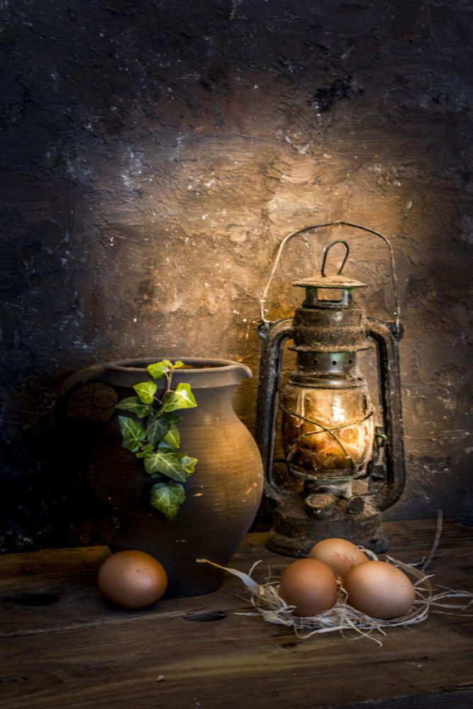 Ivy. by Mostapha Merab Samii on 500px