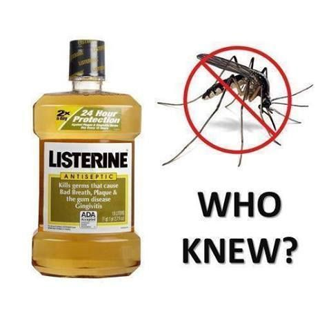 Listerine Any Color Flavor Pour It In Full Strength In