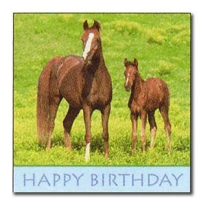 Wild Horses Birthday Luncheon Napkins (16/pkg)