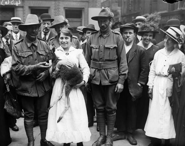 24th August 1916: Soldiers in the Australian and New Zealand Army Corps with their one year old pet kangaroo 'Joey'. (Photo by Topical Press Agency/Getty Images)