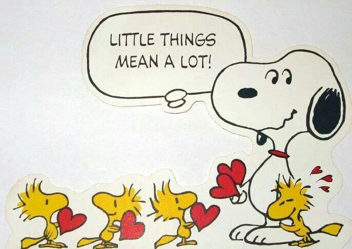 1000+ Ideas About Peanuts Snoopy On Pinterest