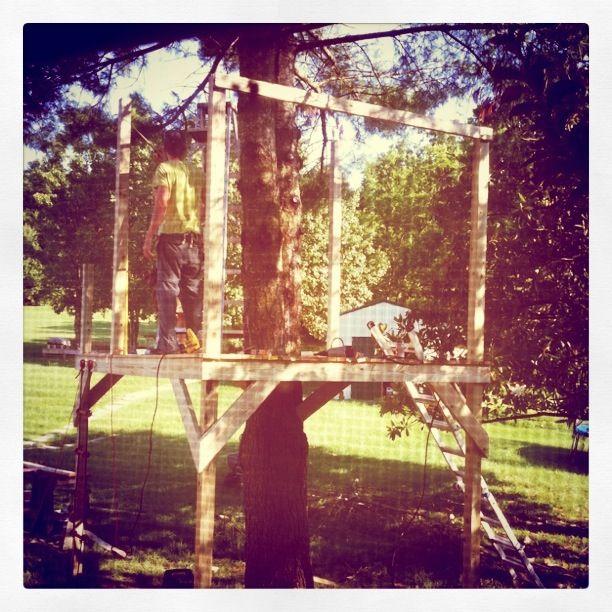 Tree house!!
