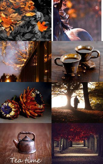 Autumn moodboards