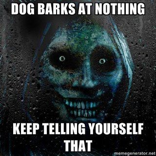 ha ha ha.  We say this ALL of the time.  SPOOKY!  They are barking at s o m e t h i n g!