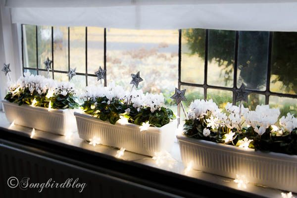 window sill winter decor image | ... window boxes become perfect window sill decorations for Christmas. by