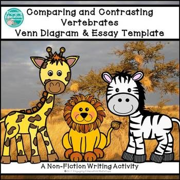 Comparing and Contrasting Two Vertebrates Graphic Organizer & Writing TemplateThis writing activity was designed to help students structure their writing into an organized two-paragraph essay.  Students first complete a Venn-Diagram graphic organizer in which they tell three specific ways two vertebrates of their choice are both similar and different from one another.