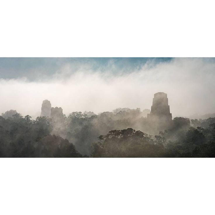 Cloudy sunrise at the ancient archaeological site of Tikal this morning. #tikal #guatemala #Travel #Explore #natgeoexpeditions #LinbladEXP…