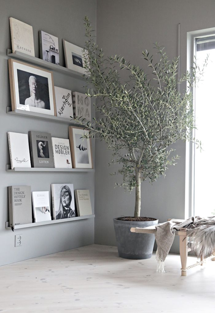 Best 20 Picture Shelves Ideas On Pinterest