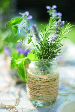 Erbe aromatiche ornamentali: vasi per la casa