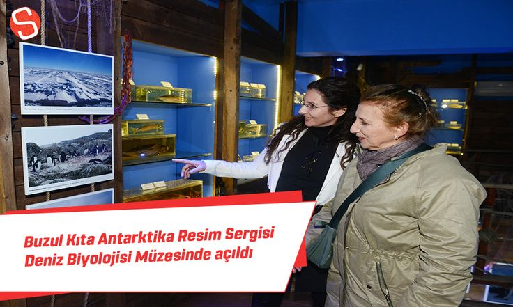 Antalya Büyükşehir Belediyesine ait Deniz Biyolojisi Müzesi Buzul Kıta Antarktika'dan Yansımalar isimli fotoğraf sergisine ev sahipliği yapıyor. #buzulkıtaantarktika #resimsergisi #denizbiyolojisimüzesi #antalya