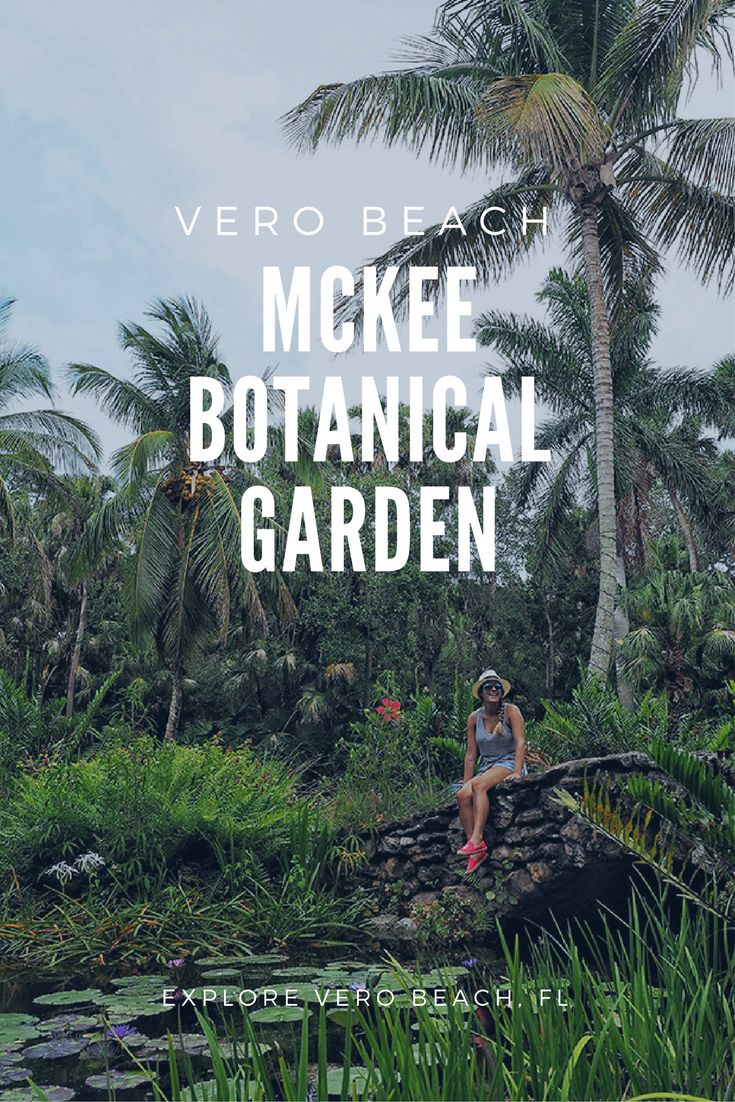 Did you ever think Florida could look so lush? Explore the McKee Botanical Gardens in Vero Beach and prepare to be amazed!