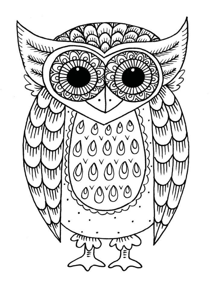 338 best Owl Coloring Pages images on Pinterest Owls Adult
