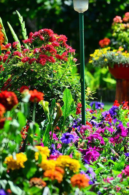 Gardening by henyrich, via Flickr