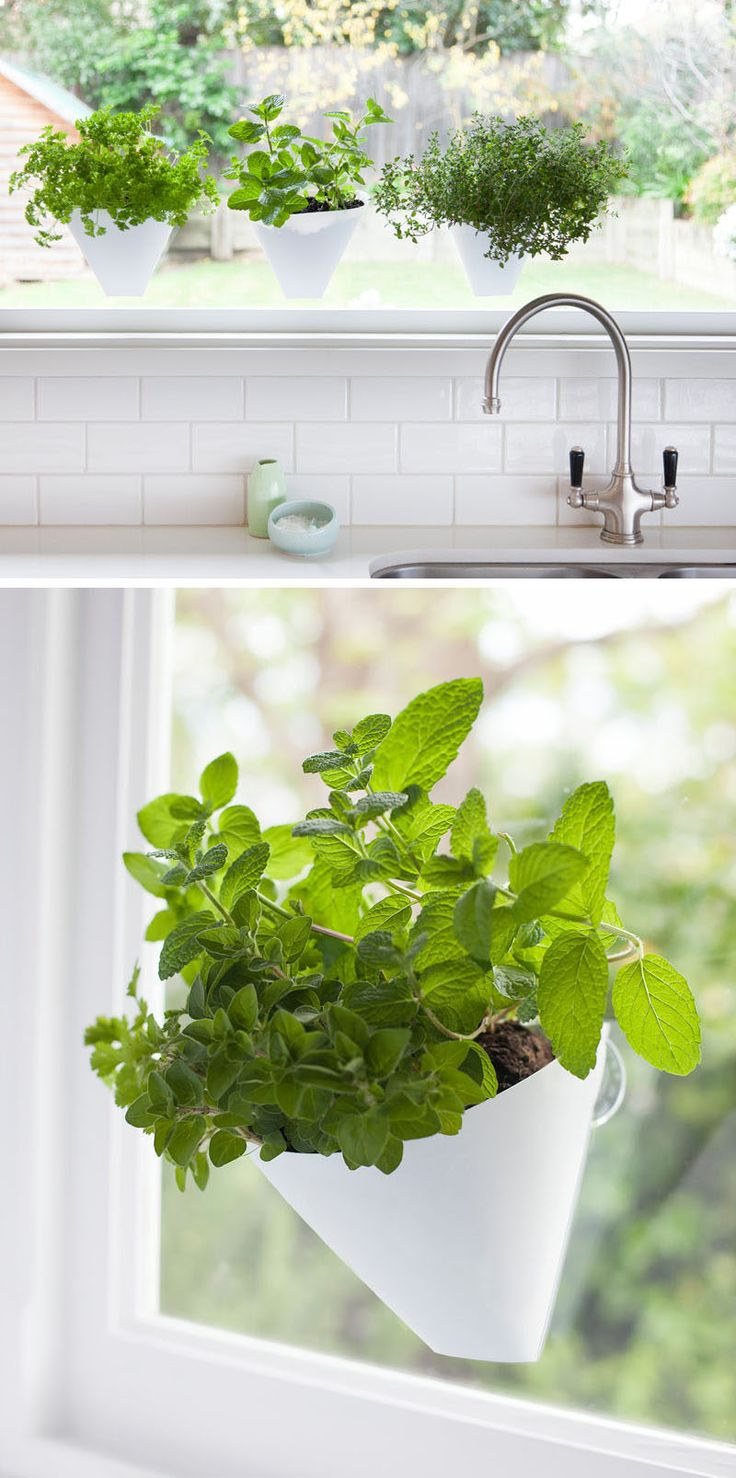 17 Best Ideas About Indoor Window Garden On Pinterest
