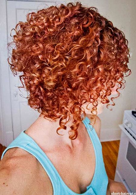 18 Latest Short Bob Curly Hairstyles Hair Styles Hair Coloring