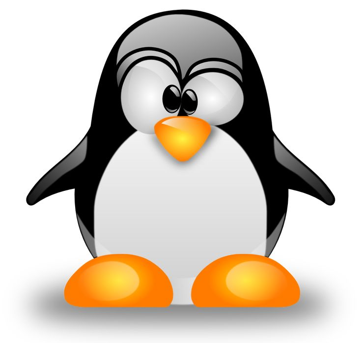 A Beginner's Guide to Free Linux Operating Systems