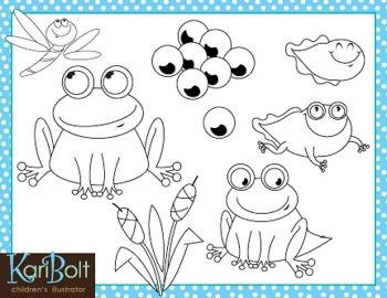 19 best Science- Life cycle of Frog images on Pinterest | Candies ...