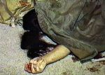 Woman brutally killed over love marriage in Pakistan Honor Killings: Islam Misogyny  Honor killings and honor violence are escalating here and abroad ...   Over 91% of honor killings worldwide are Islamic.   ...  Between 5,000 and 20,000 so-called honor killings are committed each year, ...  But of course that number is far higher.   By Pamela Geller  on May 18, 2014 http://pamelageller.com/2014/05/woman-brutally-killed-love-marriage-pakistan.html