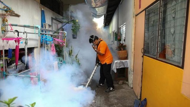 Thailand confirms 2 cases of Zika-linked microcephaly Health Ministry - Channel NewsAsia