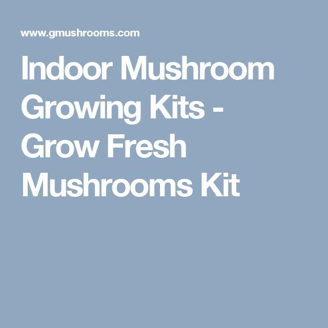 Indoor Mushroom Growing Kits - Grow Fresh Mushrooms Kit