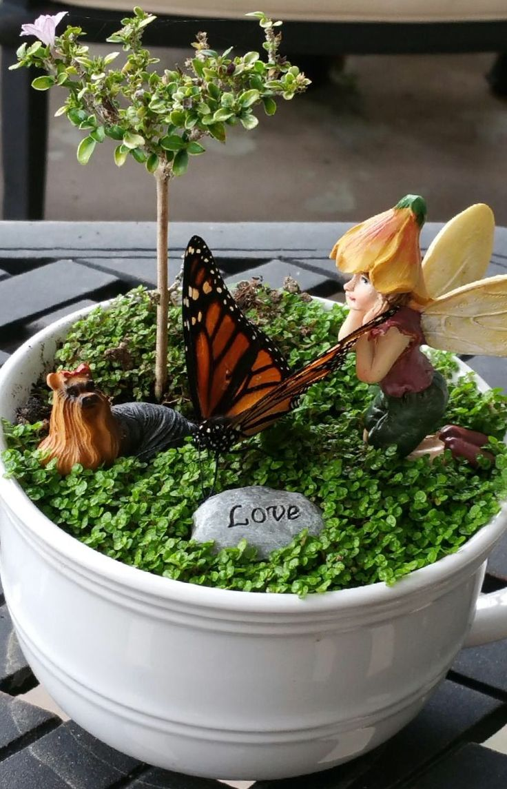 Miniature Fairy Garden TEA CUP OH
