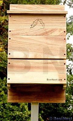 1000 ideas about bat box on pinterest build a bat house for Free bat house plans do it yourself